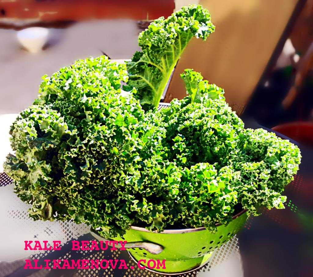 beautiful kale bunch