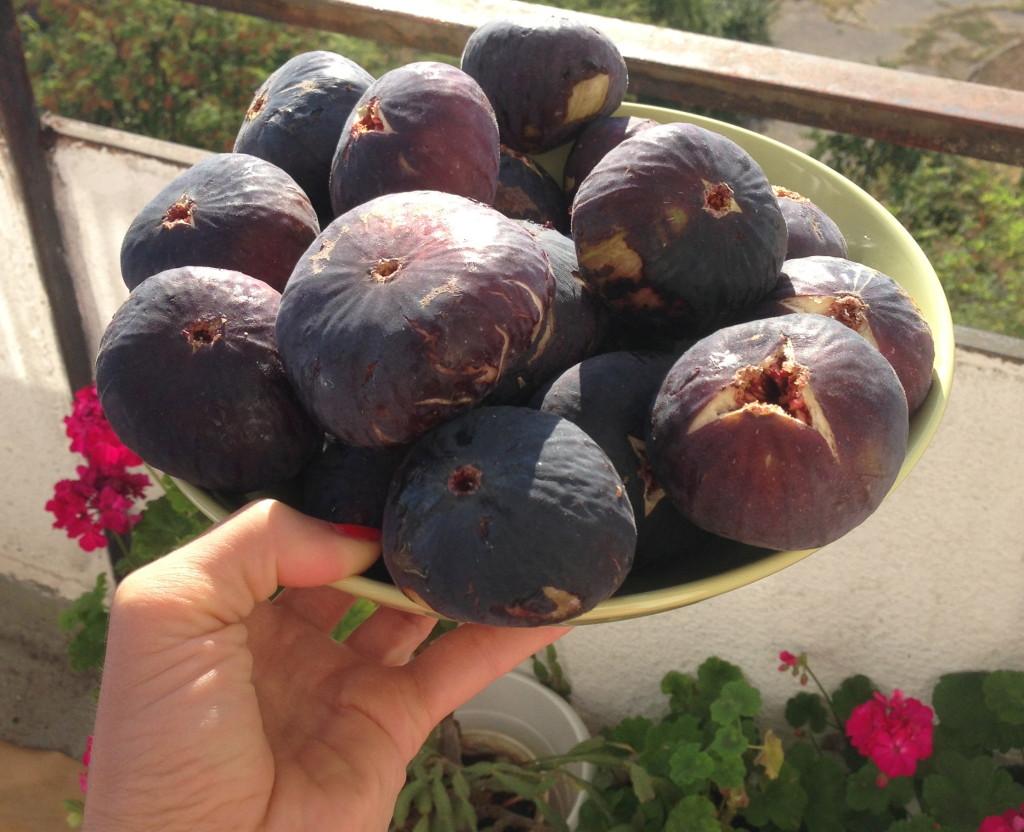 huge sweet figs