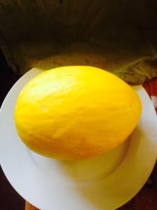 canary melon breakfast lfrv