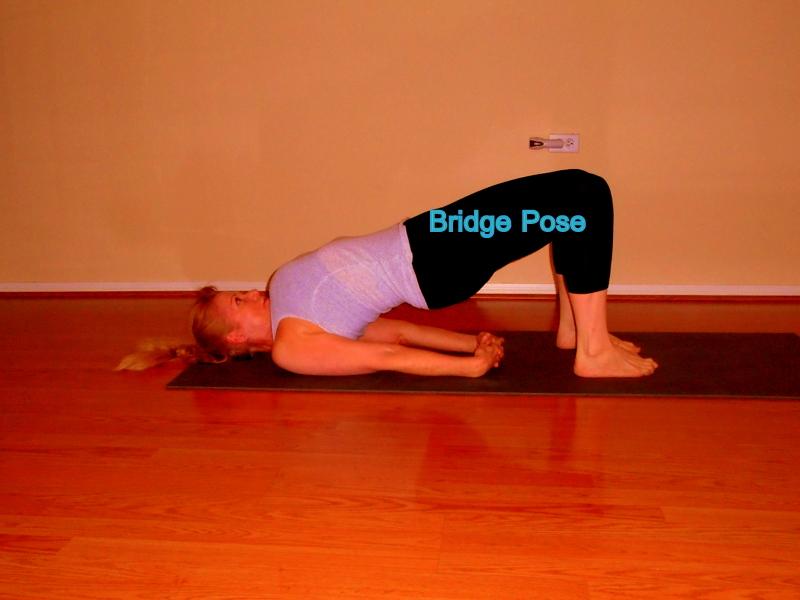 bridge pose laura