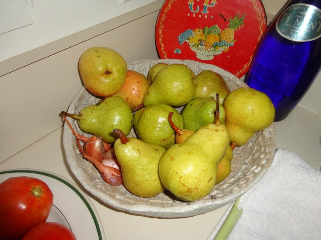 laura pears