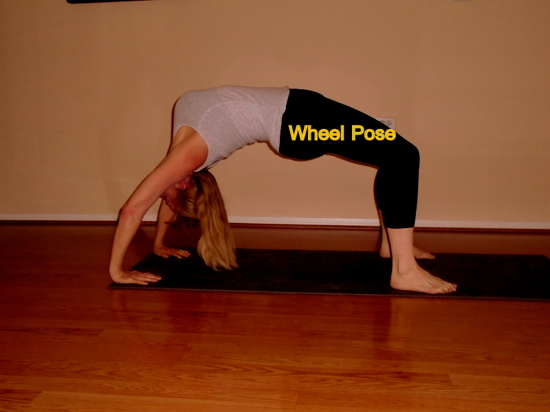 wheel pose laura