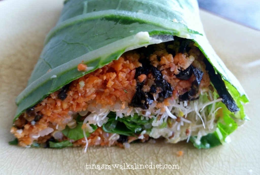 Carrot Nori Wrap